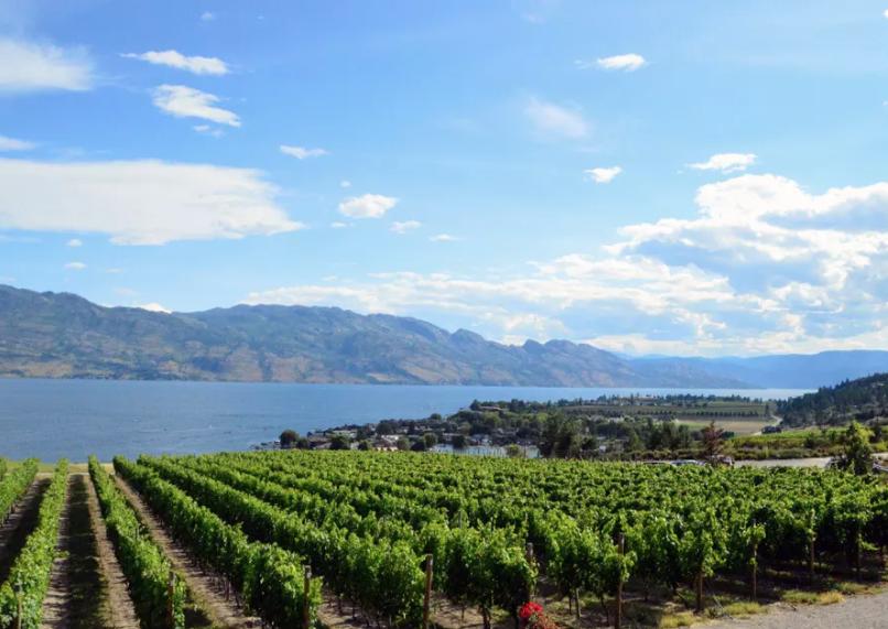 Kelowna Okanagan sightseeing adventure helicopter wine tours
